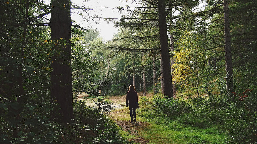 geführte Wanderungen Teutoburger Wald
