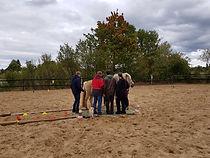 pferdegestütztes Teambuilding Osnabrück