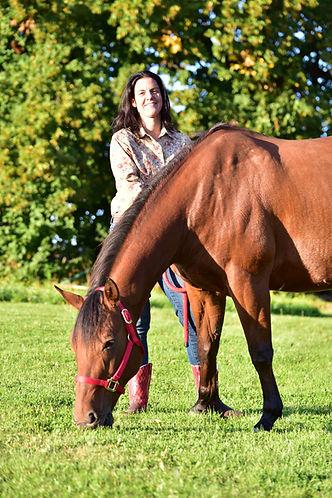 Coaching mit Pferden Osnabrückerland