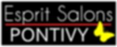ESPRIT-SALONS-PONTIVY-2020.png