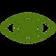 camerise santé yeux antioxydants