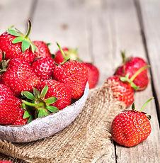 auto-cueillette fraise Baie-Comeau