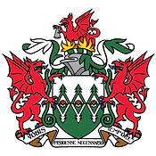 Fire-Service-logo1.jpg