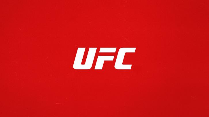 UFC_Logo_03.jpg