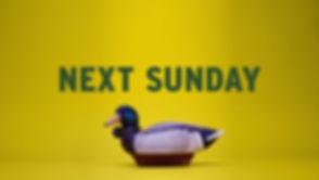 A&E Rebrand Duck Dynasty
