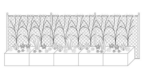 Schmetterlings-Bepflanzung mit Rankgitter