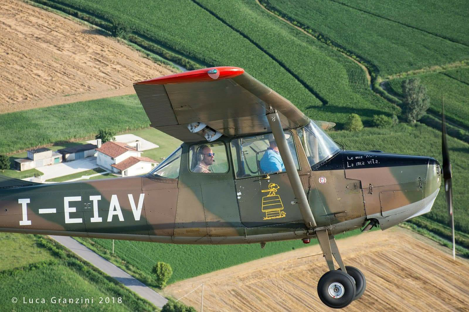 Cessna L-19_7_AeroclubSondrio