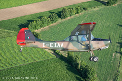 Cessna L-19_6_AeroclubSondrio