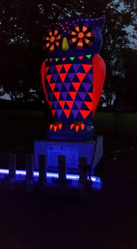 The Handsworth Park Owl at night