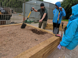 Community Planting Sessions