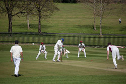 A Busy Wicket