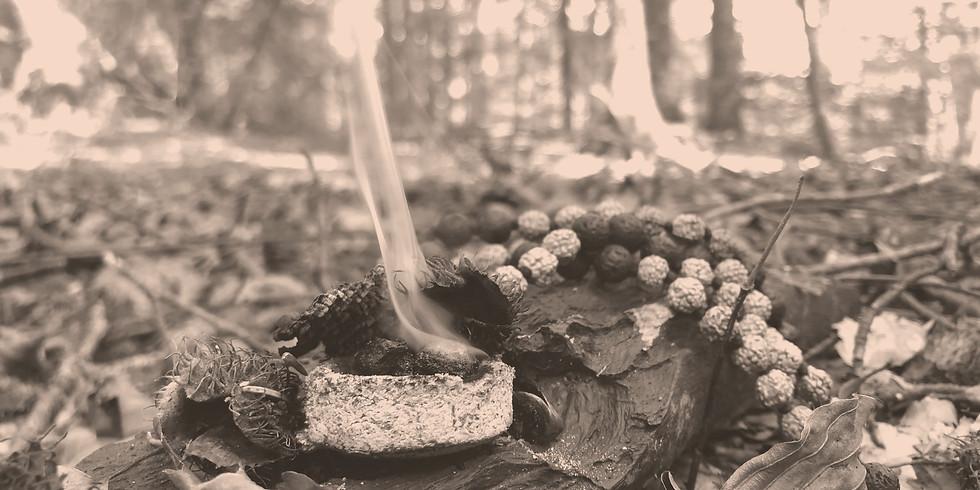 Morgenritual und Meditation: Stille Zeit im Raum Bachwiesen