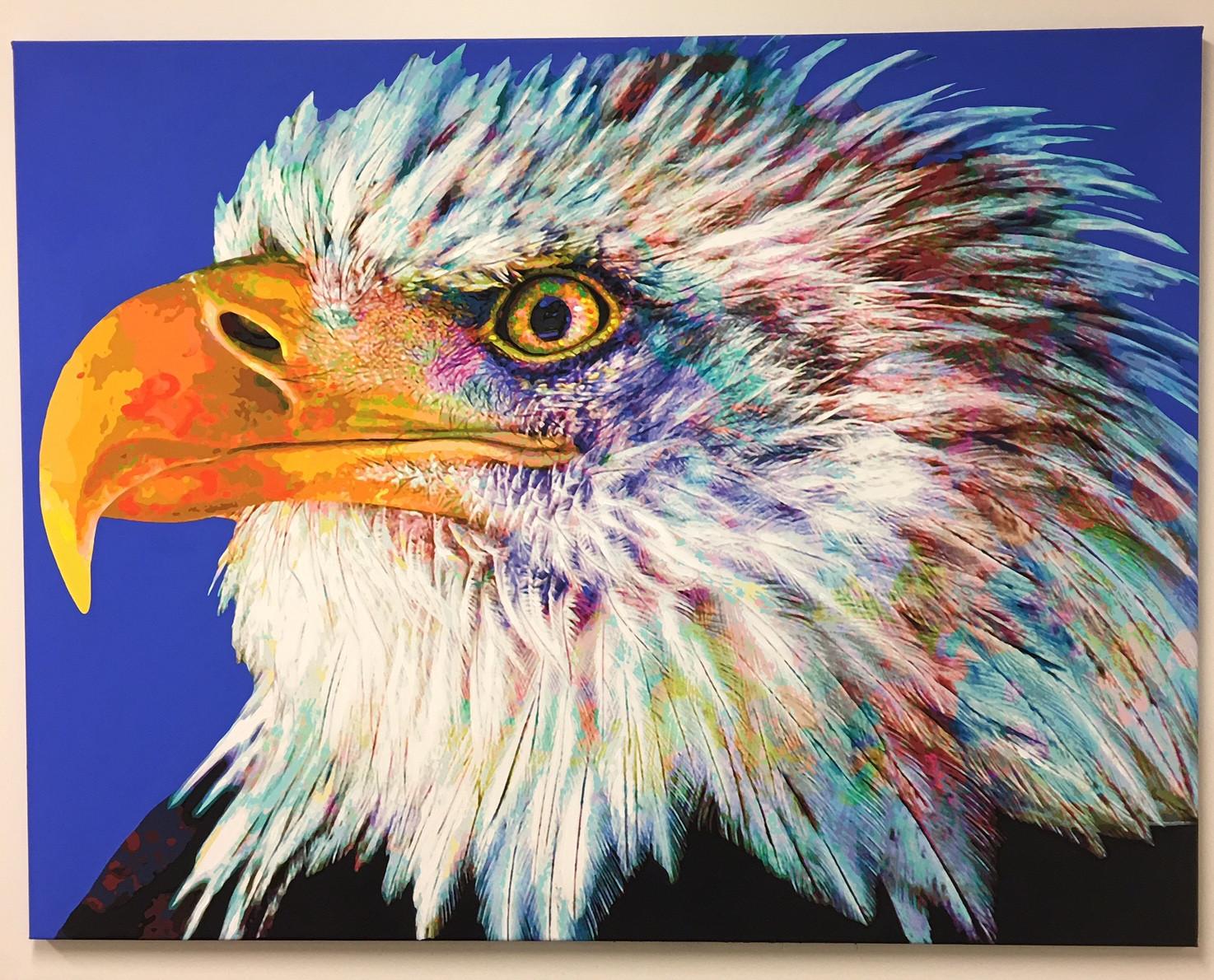 Bald Eagle (2016)