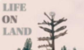 life-on-land