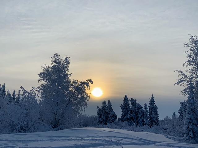 WinterYK
