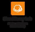 CloudBerry_Lab_Logo.png