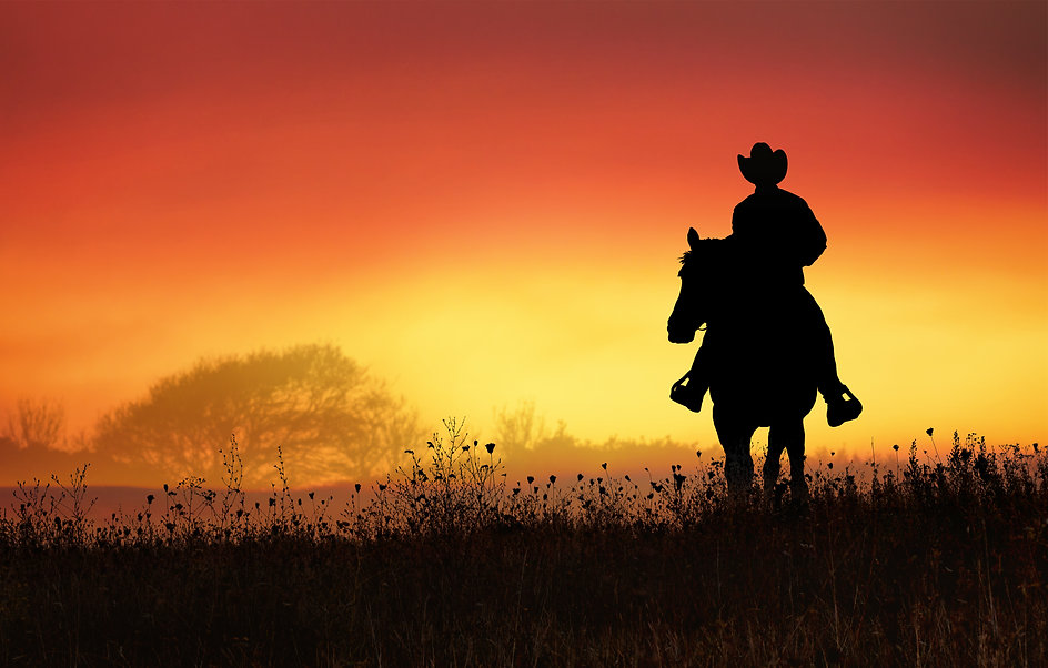 Ranch cowboy