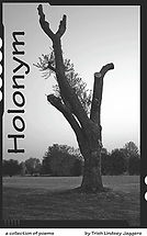 Book Title - Holonym; Book Cove - Almost dead tree with a single living branch