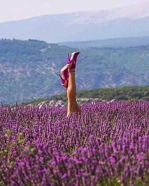 lavendershoes.jpg