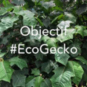 ECO GECKO.jpg