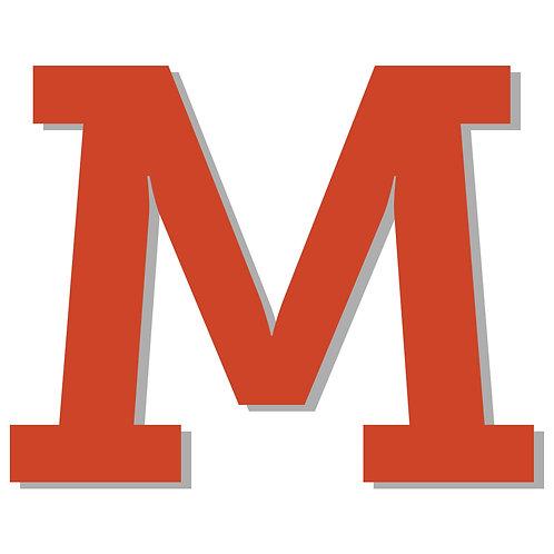Mitgliedschaft M (6 bis 29 Lernende) - 01. August 2020 - 31. Juli 2021