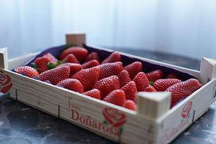 Fresas organicas