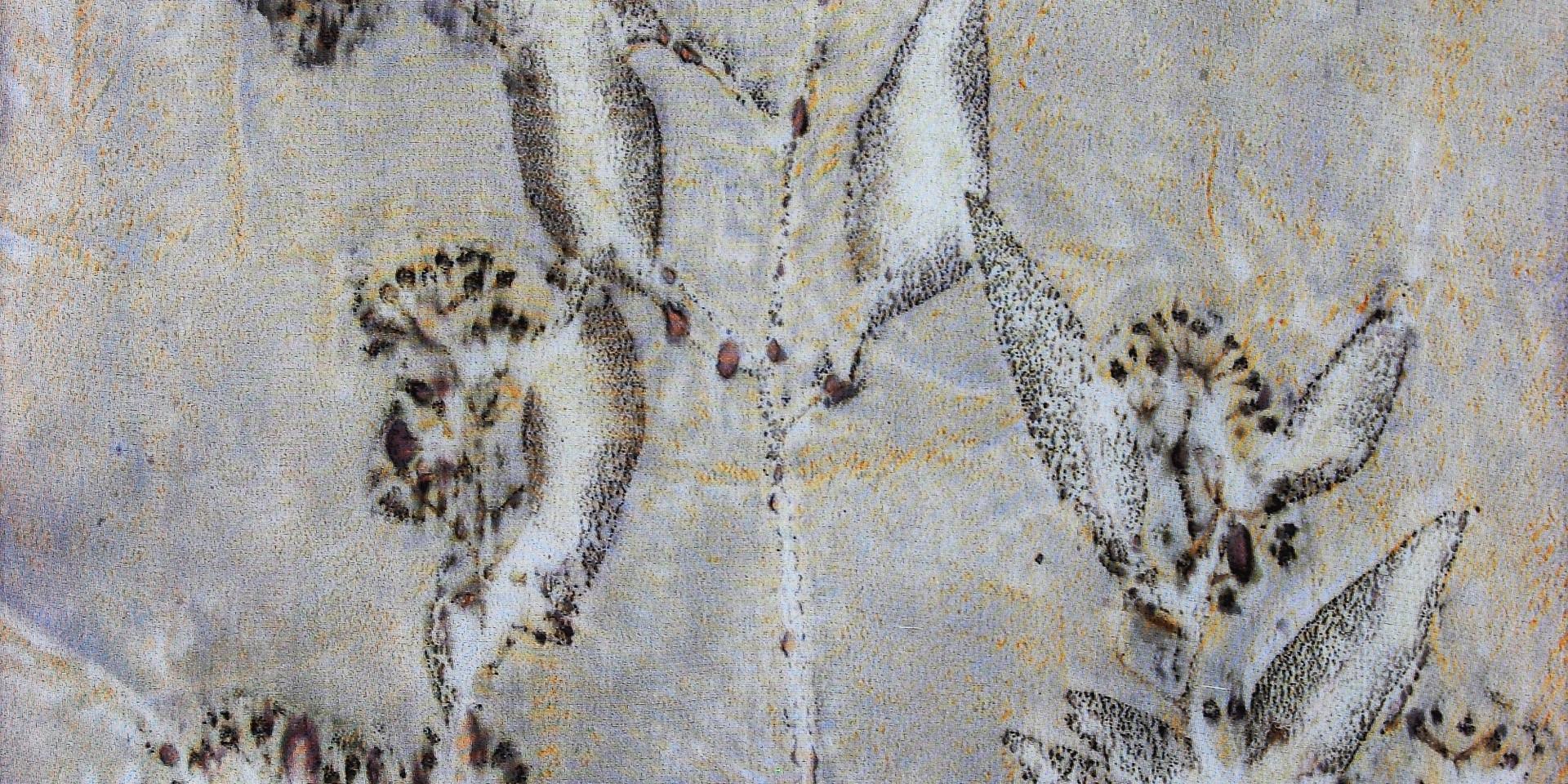 Detail of Seeded Eucalyptus