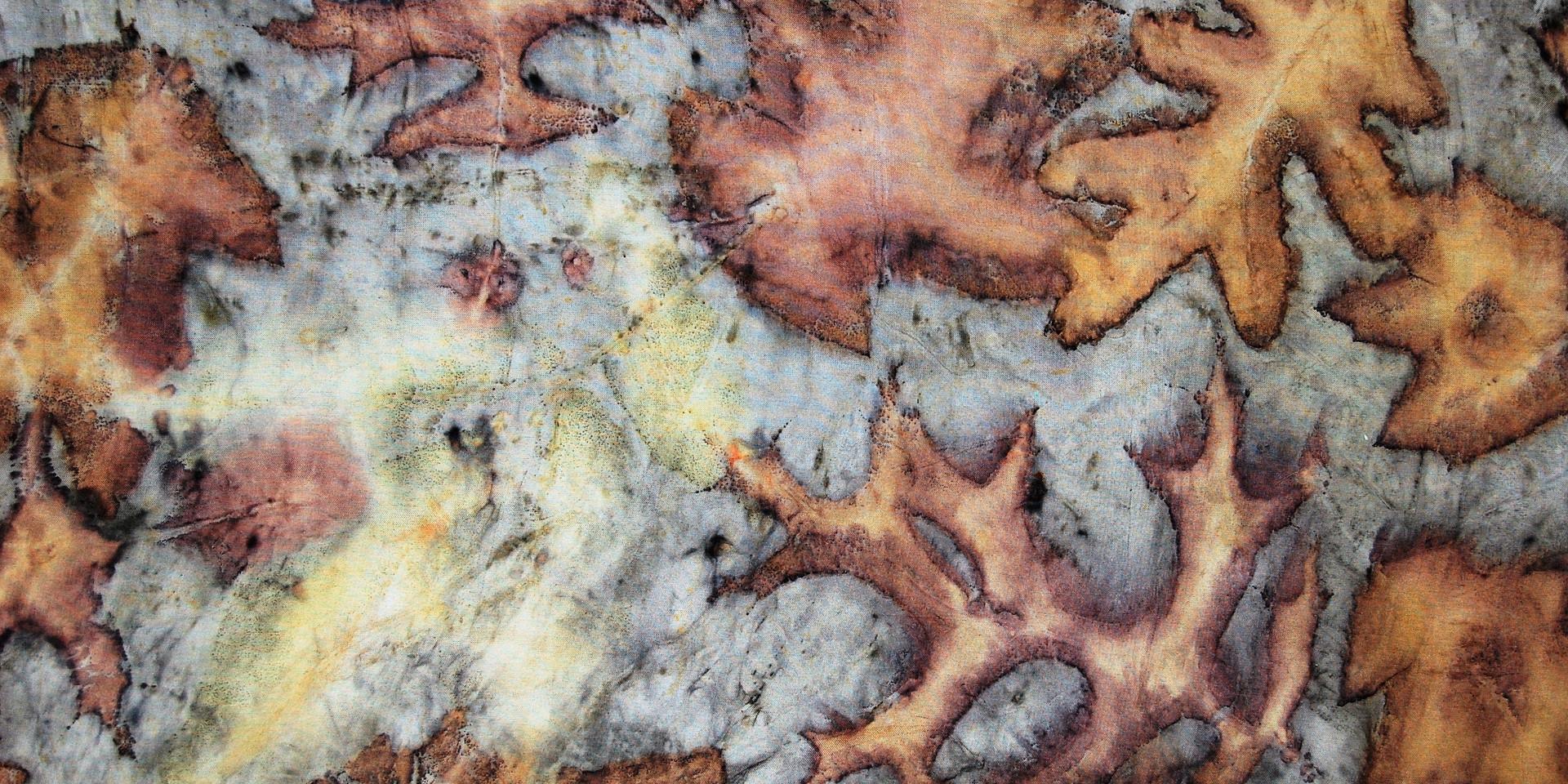 Detail of Double Oak
