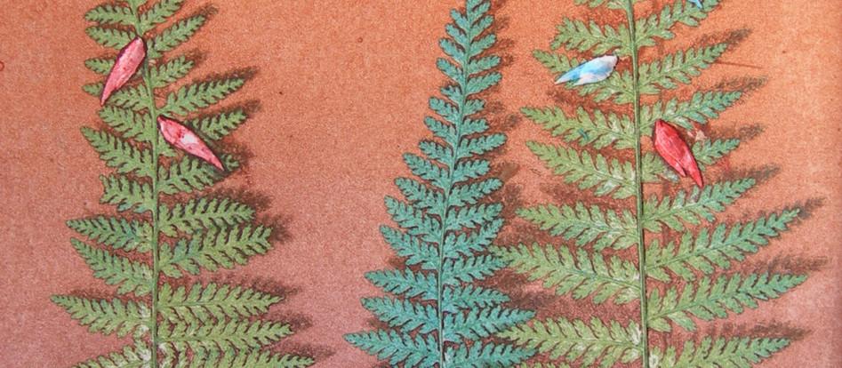 Pine Birds - Ghost Etching Press