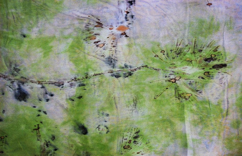 Detail - Green Pine