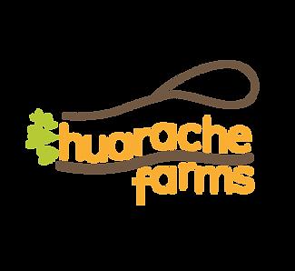 Huarache-01.png