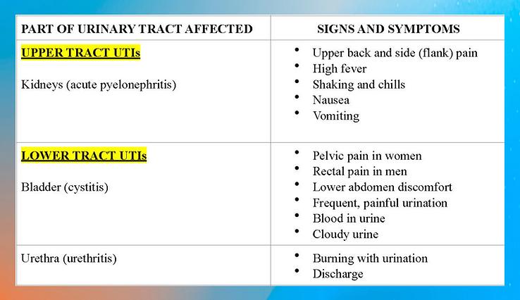 UTI chart (1).png