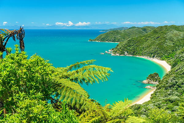 panoramic view of a tropical beach with