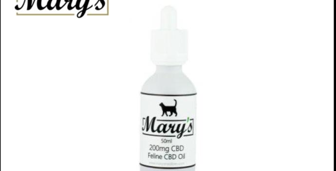 200mg CBD Oil for Felines