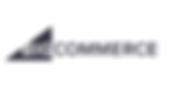 big commerce logo.png