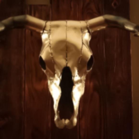 Metal Art Skull