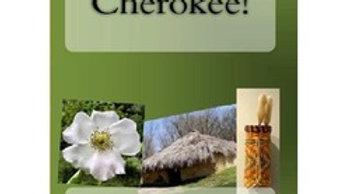 Wow - Cherokee Native Americans