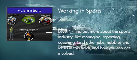 Working in Sports