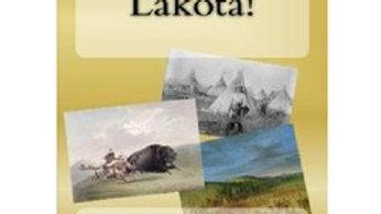 Wow - Lakota Native Americans