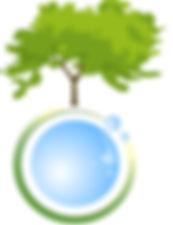 arbre_isolé.jpg
