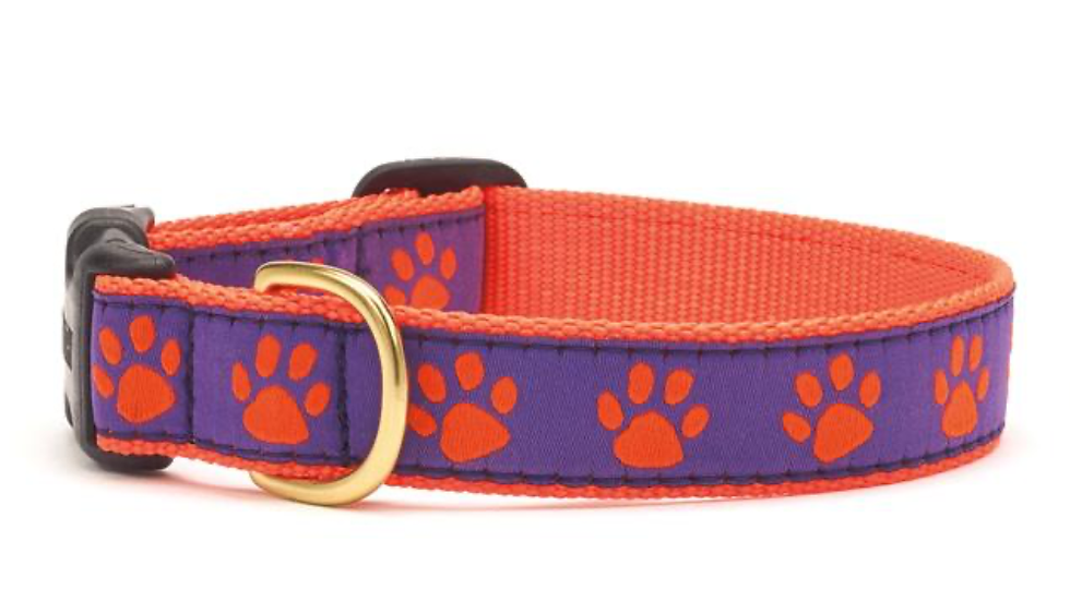 Purple Orange Dog Collar