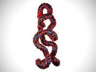 Alien DNA Red Bump Series