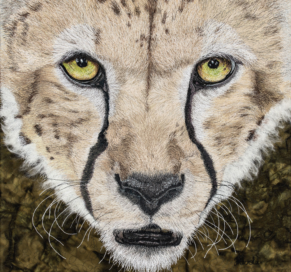 African Cheetah Portrait