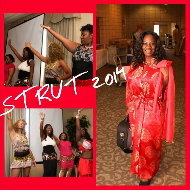 Strut Show Case