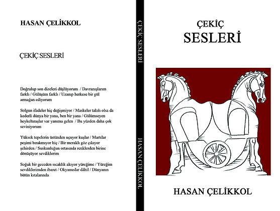 ÇEKİÇ SESLERİ