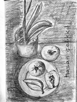 Meyvalar