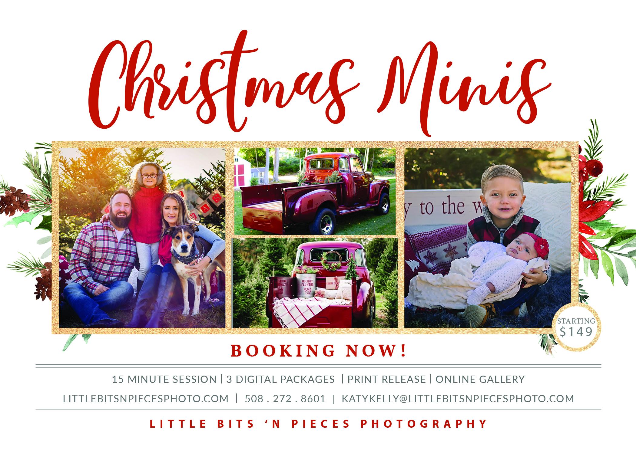 Christmas Minis Session