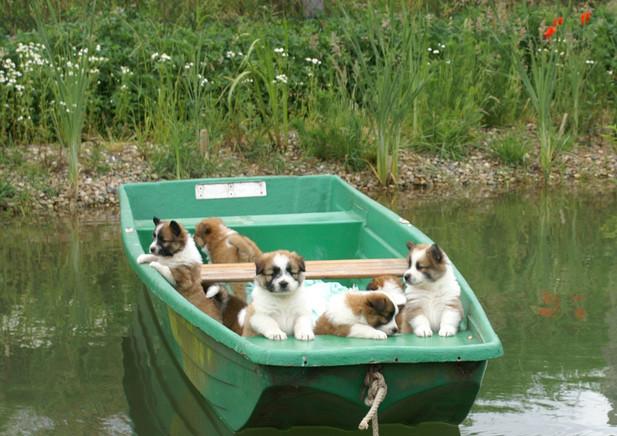 Bootsfahrt auf eigenem See