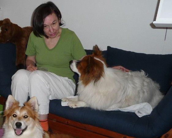 Freude empfinden durch Hunde