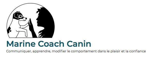 Marine coach canin.jpg